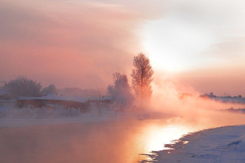алтай, оз., светлое, лебеди, зима однажды в Январеphoto preview