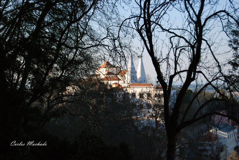 Street/reportage, Landscape,  Sintra Palacephoto preview