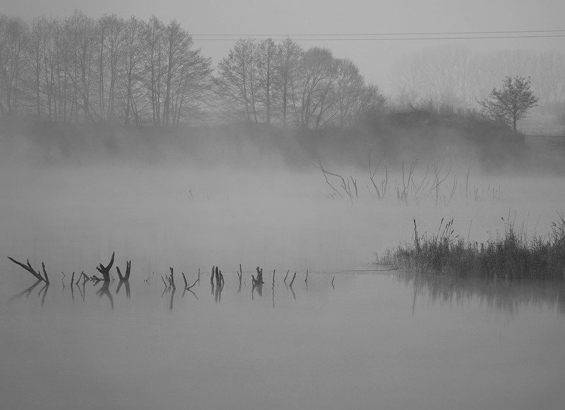 Туман.photo preview