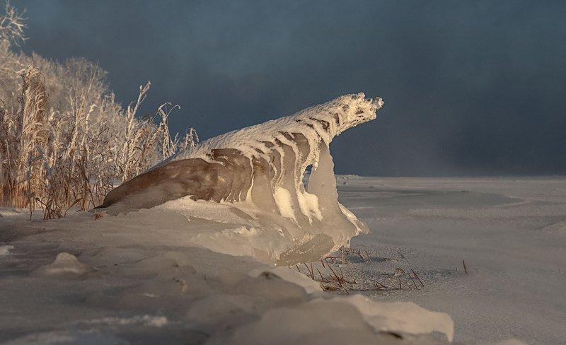 мороз, иней, енисей, холод. Оживший динозаврик.photo preview