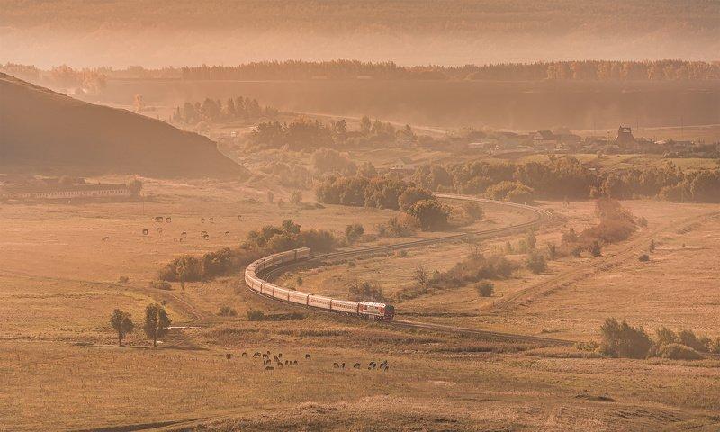 поезд, утро, рассвет, поле, железная дорога, лето, горы, дымка, кандры, skrylov, skrylov_official ***photo preview