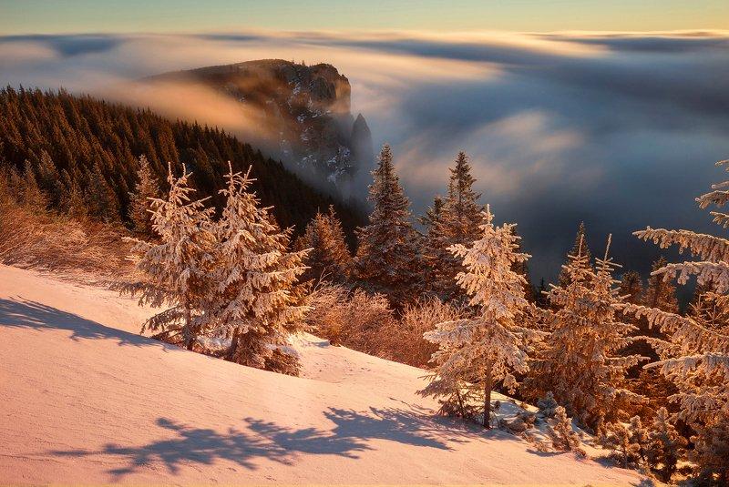 winter, trees, blizzard, snow, landscape, travel, nature, mountain, romania, cold, sunrise Golden Timesphoto preview