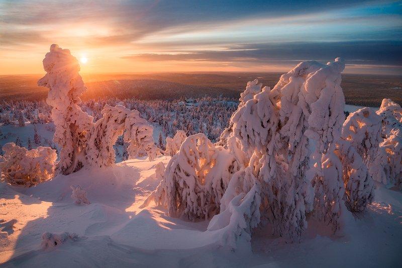 солнце, снег, небо, деревья, сопки, север Предчувствие весныphoto preview