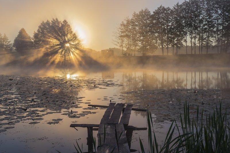пейзаж,природа,фотография,красота,сергейкорнев Жгучая яркостьphoto preview