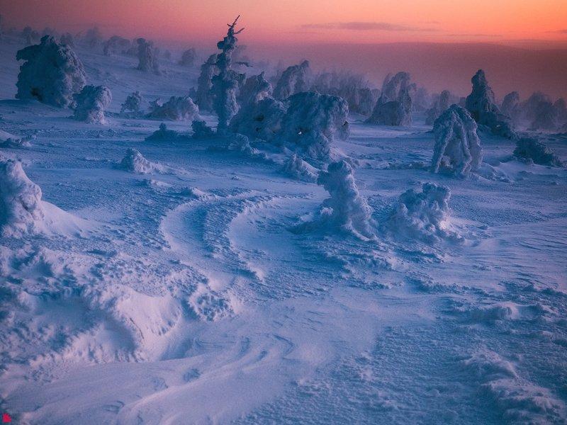 Планета Зимаphoto preview