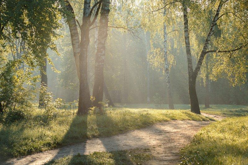 рассвет,весна,лучи,россия \