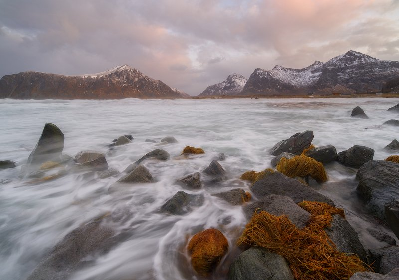 Pink sunset in the Lofoten.photo preview