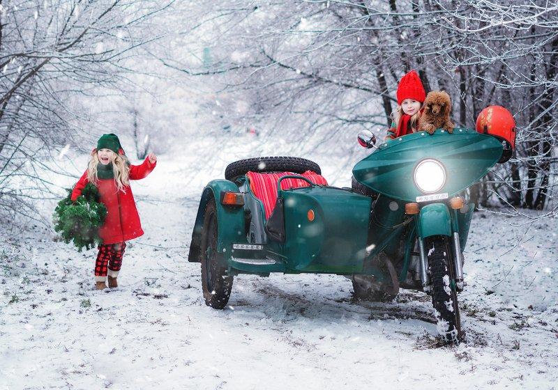 зима новый год дети собаки снег рождество photo preview