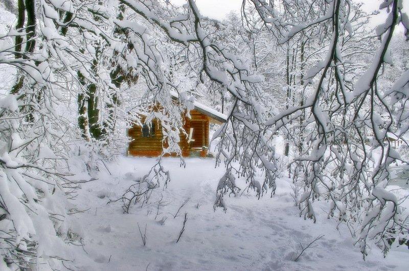 зима лес горы избушка На опушке....photo preview
