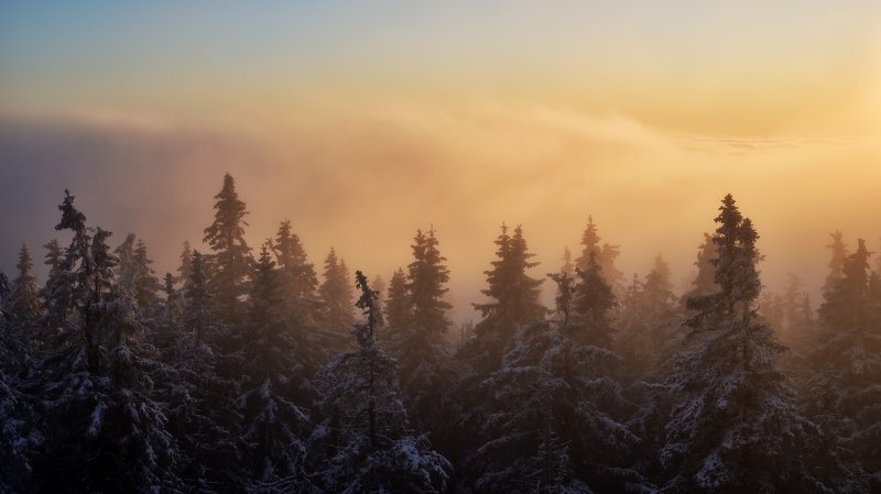 winter, snow, sunset, czech republic, inversion, On the edge of inversionphoto preview