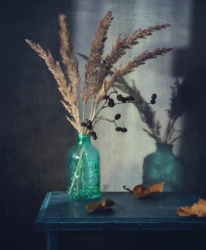 натюрморт,still_life,тень ... фото превью
