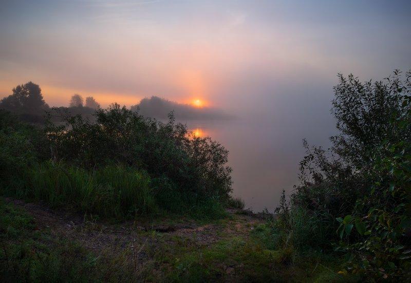 лето, рассвет, туман, река, На утренней зорькеphoto preview