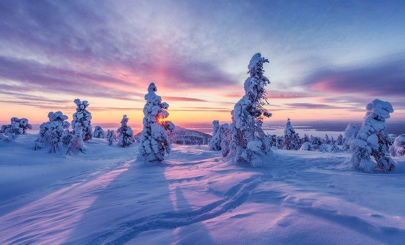 заполярье, гора, снег, волосная, ели, рассвет, закат Заполярьеphoto preview