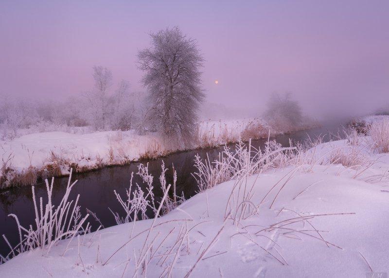 утро, мороз, туман, иней, речка, луна, пейзаж, рассвет, снег, зима, morning, dawn, winter, landscape, frozen, fog, small, river, frost, snow, moon, foggy, trees, misty, mood Рассвет в морозном тумане ..photo preview