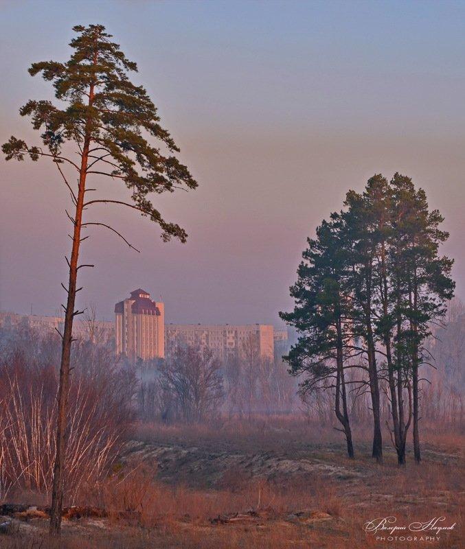утро, рассвет, туман, город Город просыпается.photo preview