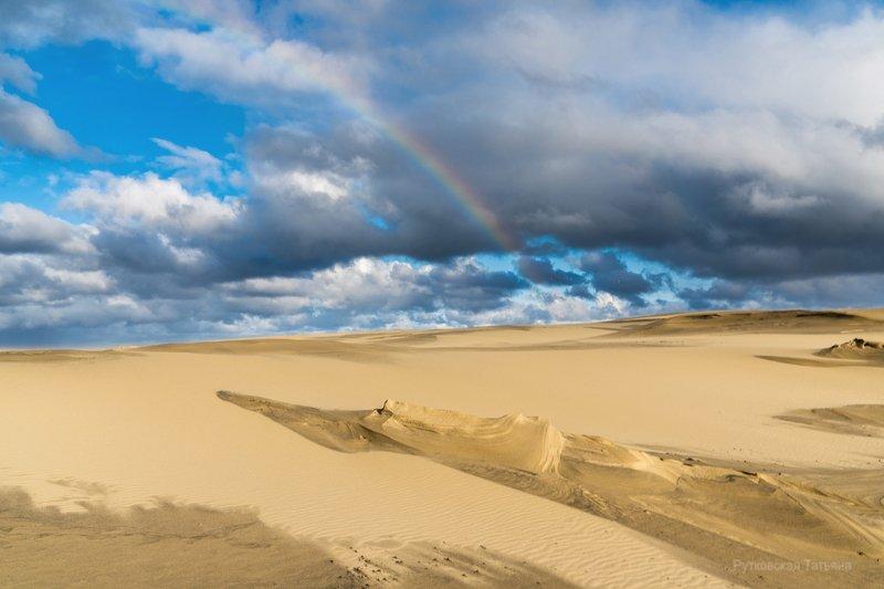 В дюнах после дождяphoto preview