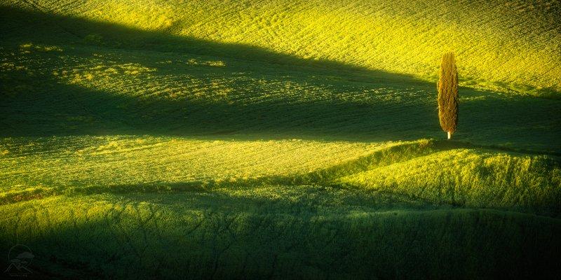 пейзаж, природа, тоскана, италия, весна Под утренними лучамиphoto preview