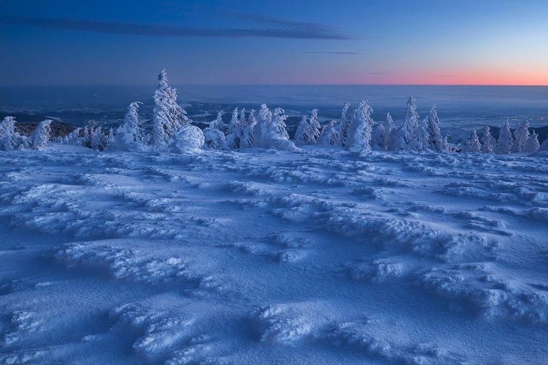 winter, trees, blizzard, snow, landscape, travel, nature, mountain, romania, cold, sunrise Ice Agephoto preview