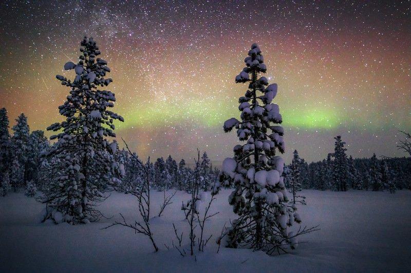 Звёздное январяphoto preview