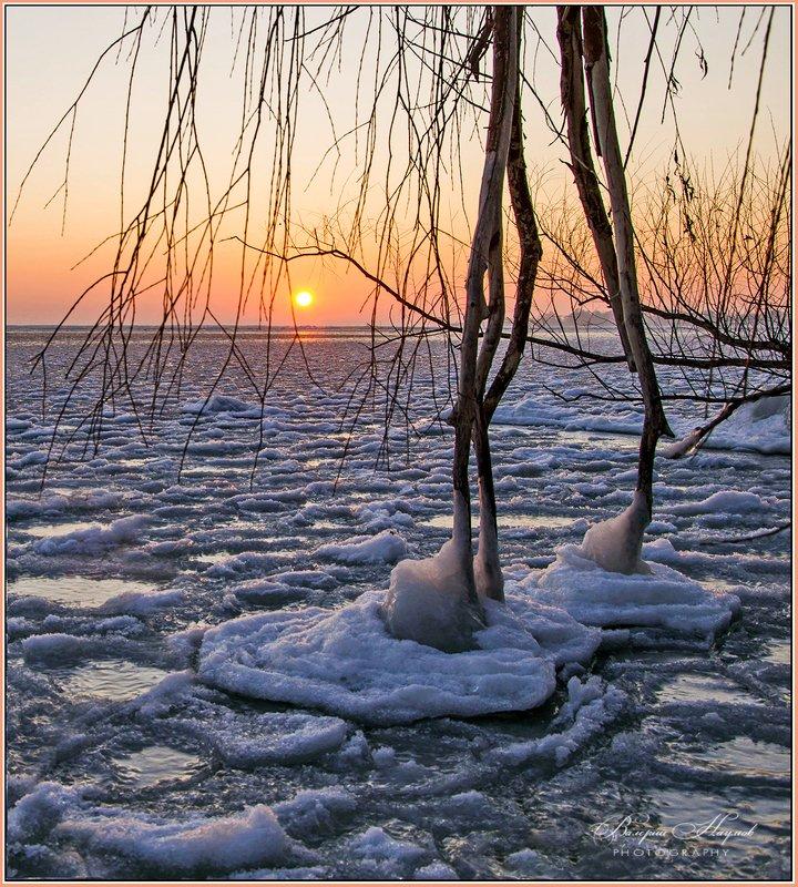утро, зима, рассвет, река Про рассвет и ледяные лепёшкиphoto preview