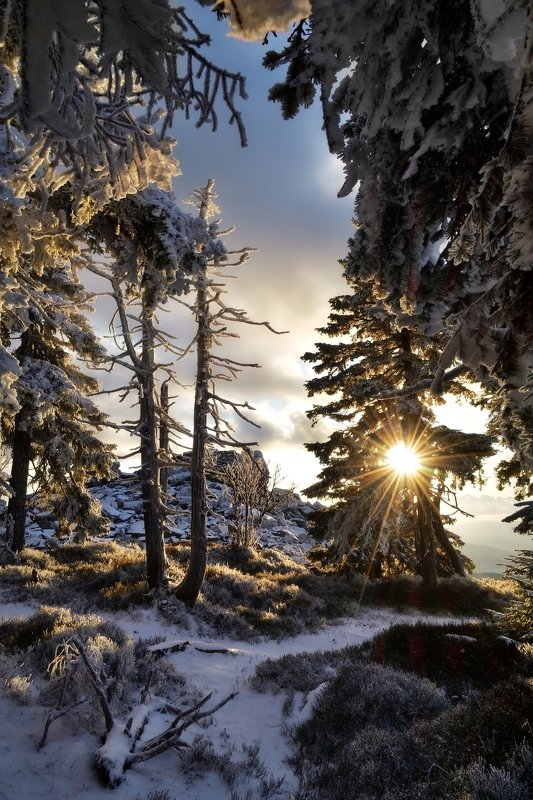 winter, snow, sunset, czech republic, End of the dayphoto preview