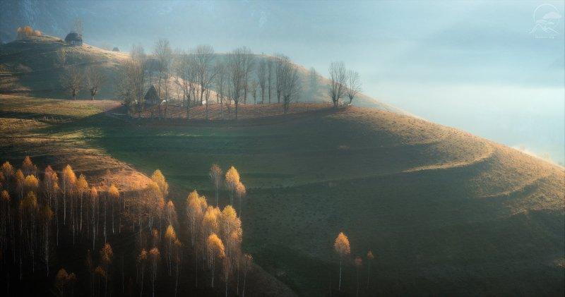 пейзаж, природа, дерево, румыния, осень, холмы Румынская осеньphoto preview