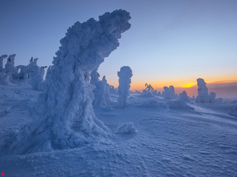 Снеговиныphoto preview