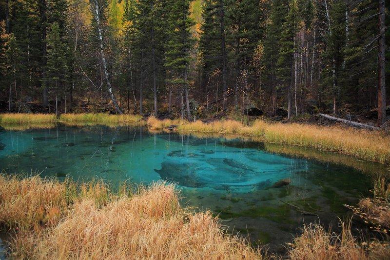алтай, , озеро, горы, природа Гейзерное озероphoto preview