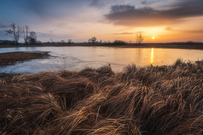 Sunset over the pilica river backwaters, Polandphoto preview