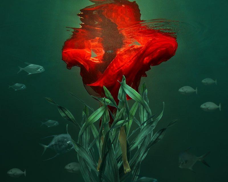 fine art, portrait, under water, green, red, flower, портрет, файн арт, красный цветок, вода, под водой Red flowerphoto preview