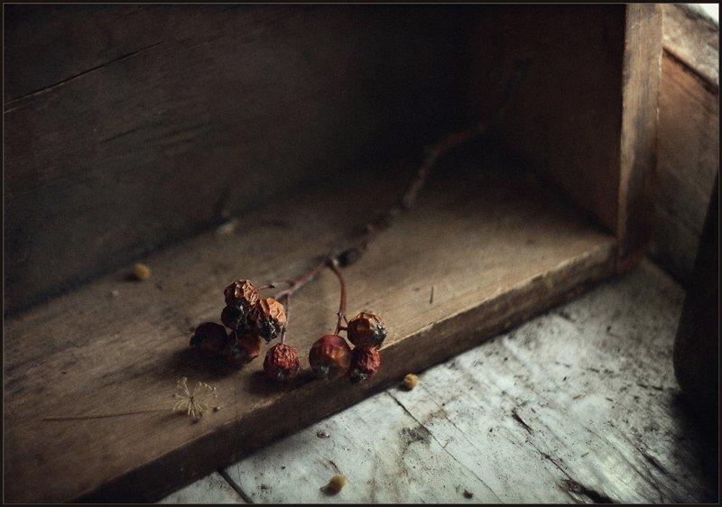 Веточка..photo preview