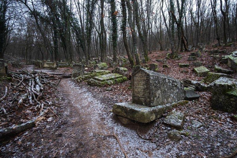 крым, кладбище Заброшенное кладбище в Крымуphoto preview