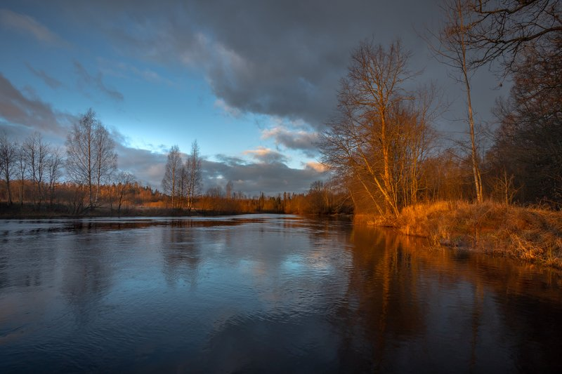 Яркий утренний свет на речке  Лужского районаphoto preview