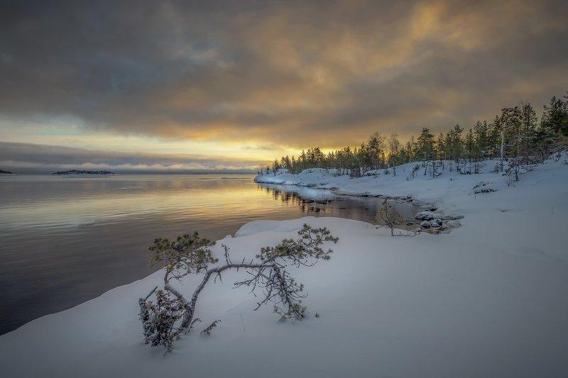 На берегу  Ладожского озераphoto preview