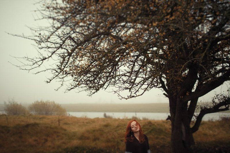 Autumn fellingphoto preview