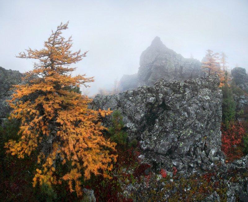 урал, осень, серебрянский камень О рыжих красавицах...photo preview