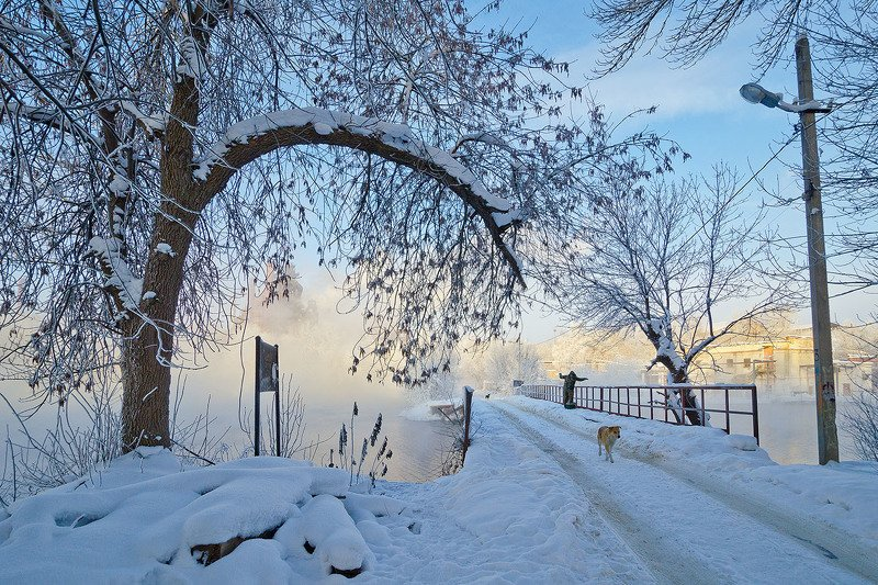 тула, косая гора, зима Он, она и ещё одна...photo preview