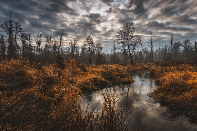 Jeziorka river, Polandphoto preview