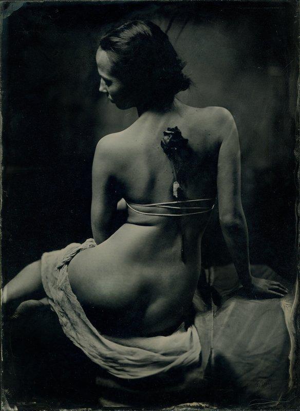 wetplate ambrotype девушка с розойphoto preview