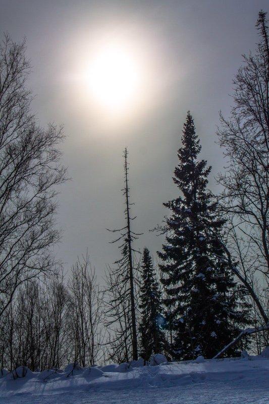 зима *photo preview