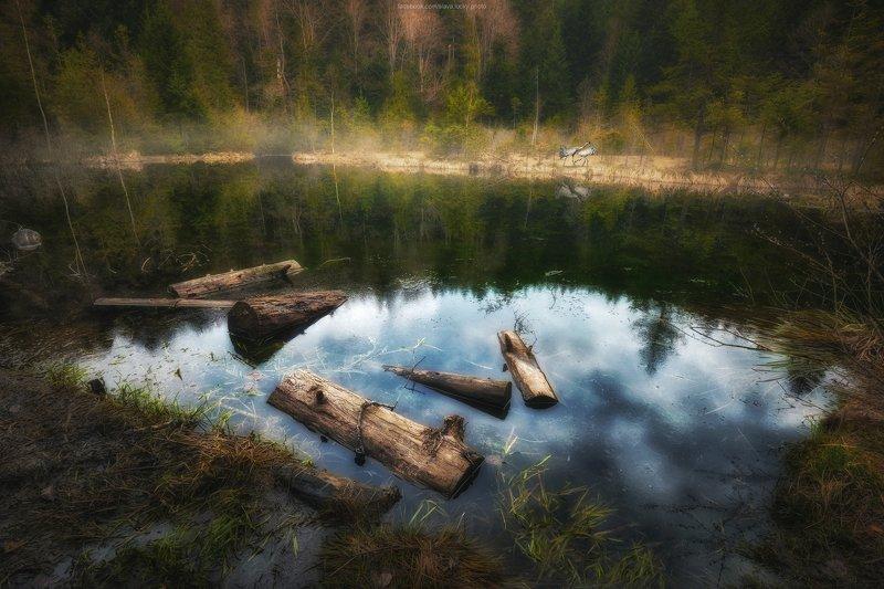 карпаты, озеро, природа, лес, озеро, горное озеро, отражение, спокойствие, тишина Журавлиное / Мёртвое озероphoto preview