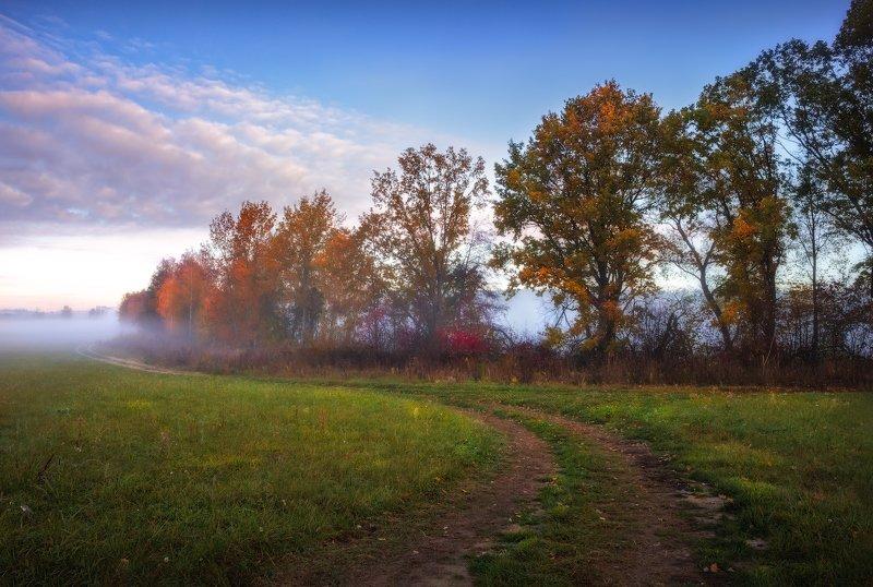 рассвет, осень,дорога, туман, Осенняяphoto preview