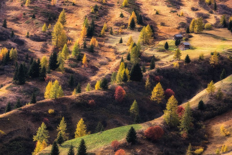 Palette of autumnphoto preview