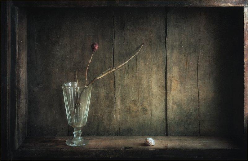 Увидеть тишину..photo preview