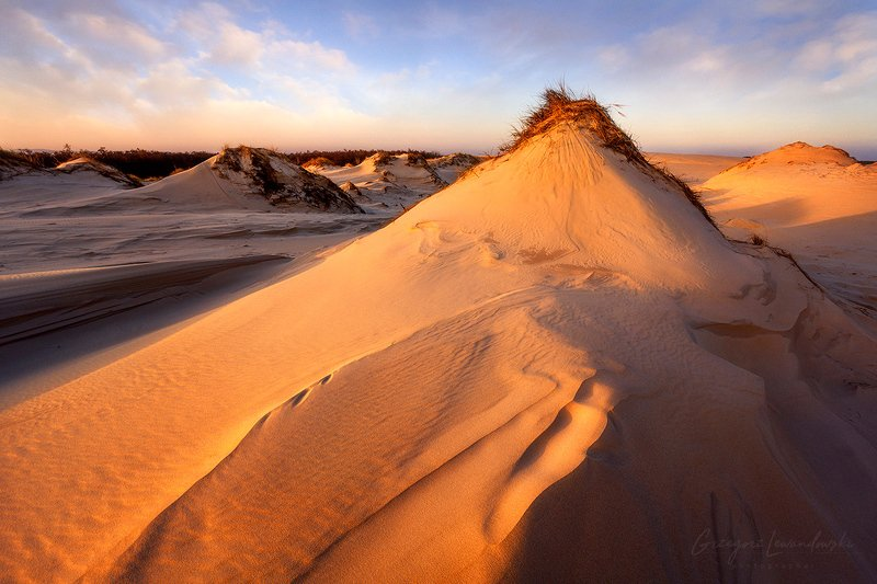 On the dunes фото превью