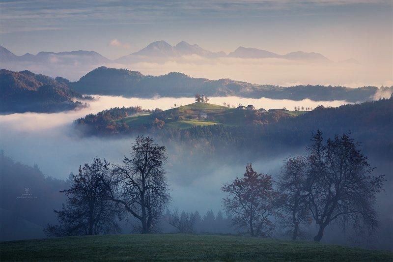 За синим туманомphoto preview