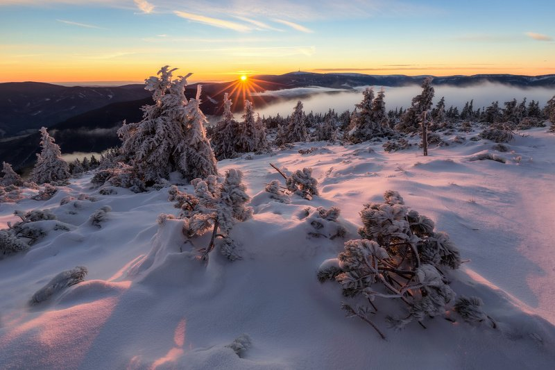 landscape, tree, sunrise, panorama, fog Winter Morning in Jeseníkyphoto preview
