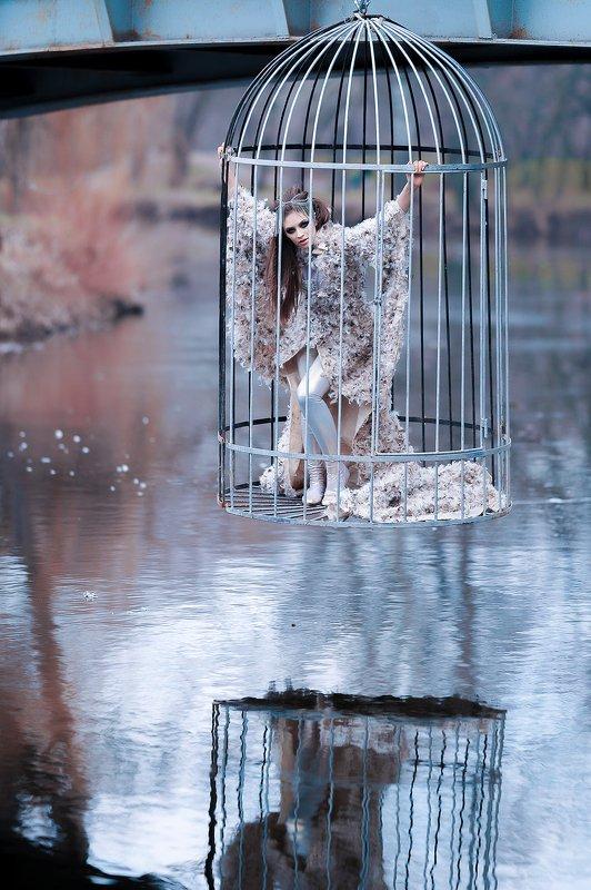 зима птица  девушка арт photo preview