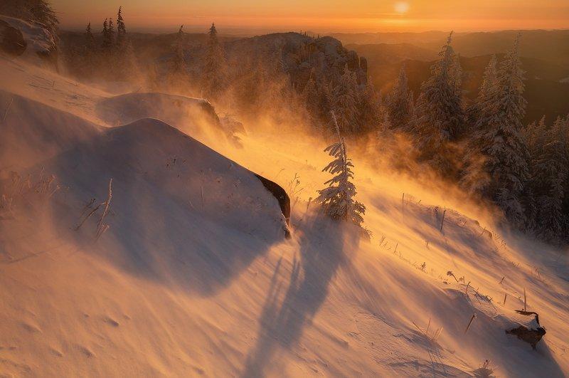 winter, trees, blizzard, snow, landscape, travel, nature, mountain, romania, cold, sunrise Golden Blizzardphoto preview