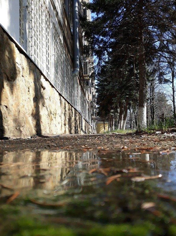 Февральская капель или фото ни о чем)))))photo preview